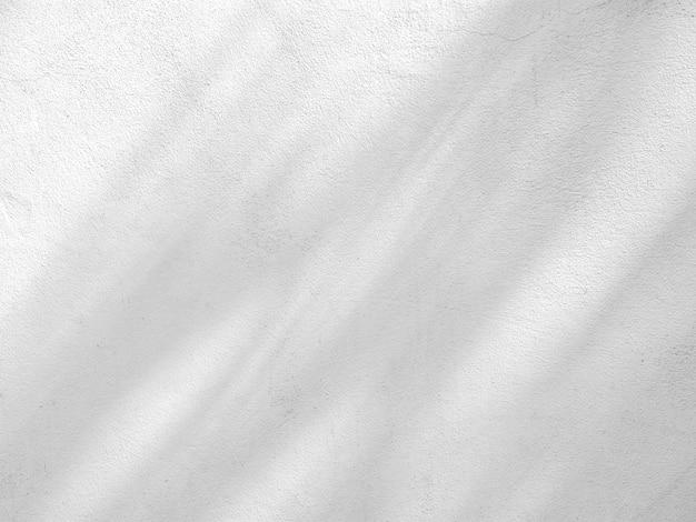 Sombra de galhos e folhas na parede de cimento branco