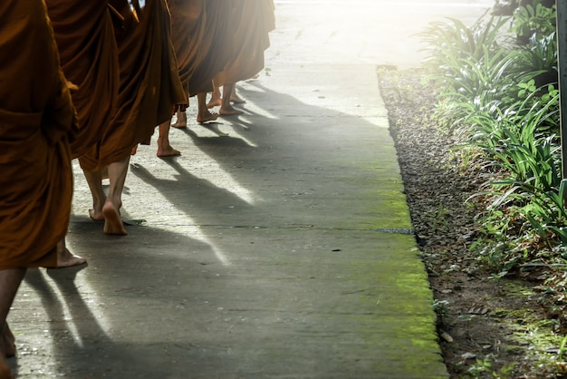 Sombra de monges ambulantes