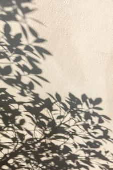 Sombras das folhas na parede