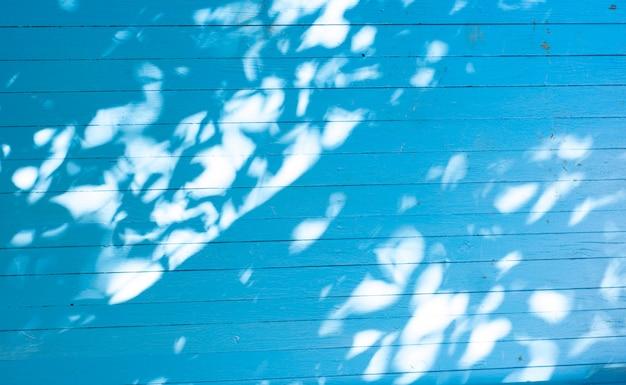 Sombras de verão deixa em um fundo azul de madeira