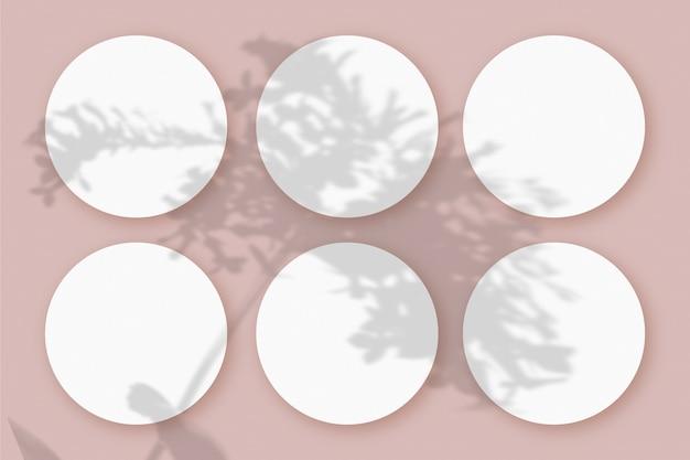 Sombras vegetais sobrepostas em 6 folhas redondas de papel texturizado branco em um fundo de mesa rosa
