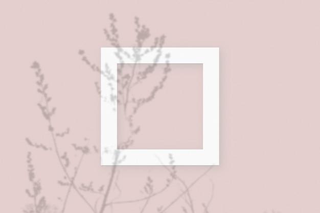Sombras vegetais sobrepostas em moldura quadrada de papel branco texturizado em um fundo de mesa rosa