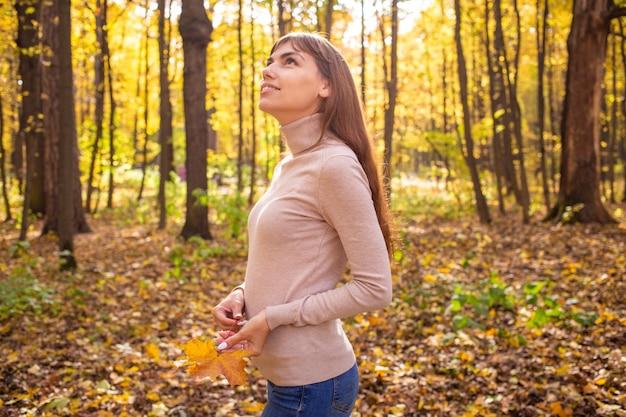 Sonhando na floresta, aproveite o outono