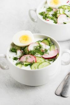 Sopa russa fria tradicional com kefir, pepino, rabanete, ovo e salsa
