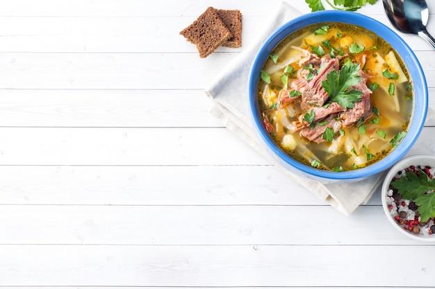 Sopa tradicional do repolho do russo com carne e ervas frescas em uma tabela clara.