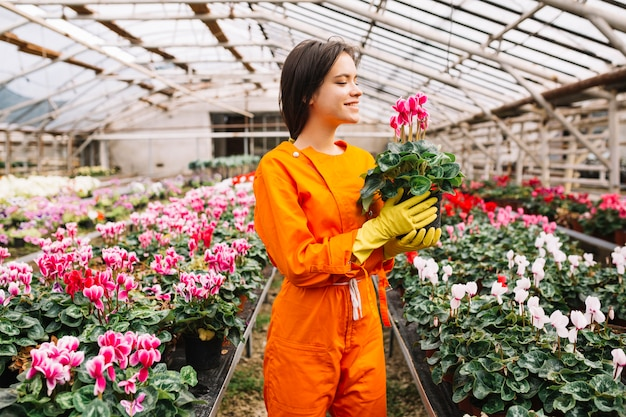 Sorrindo jovem jardineiro feminino segurando o vaso de flores rosa em estufa