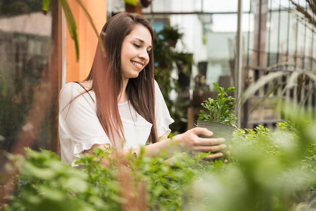 Sorrindo, mulher olha, em, planta potted, em, estufa