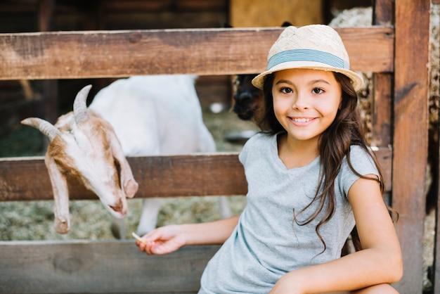 Sorrindo, retrato, de, um, menina, alimentação, cabra, em, a, celeiro