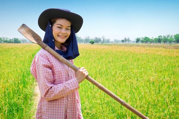 Sorriso feliz fêmea asiático novo do fazendeiro e ferramenta de exploração em um campo verde do arroz