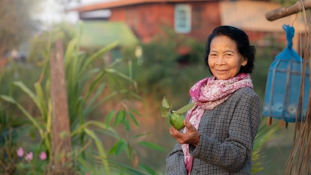 Sorriso feliz idoso idoso asiático com a fazenda orgânica em segundo plano, conceito de estilo de vida de mulheres idosas asiáticas