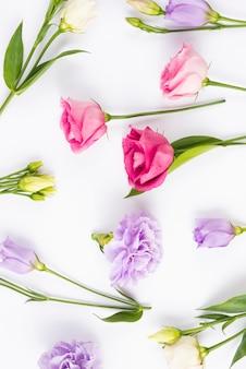 Sortimento, de, pastel, flores, com, folhas