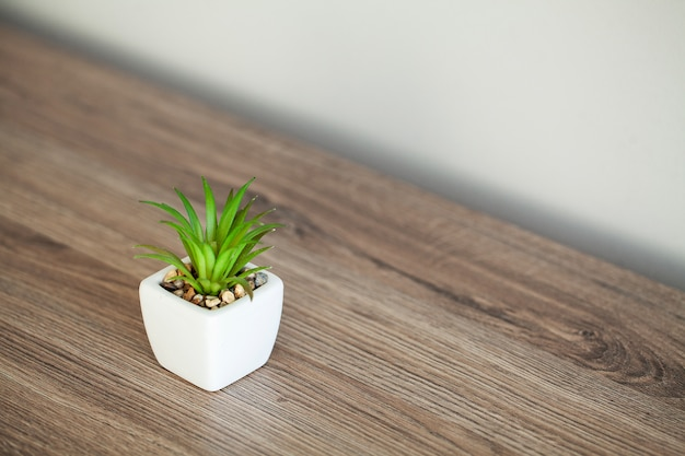 Spa. planta suculenta na borda da janela no banheiro moderno