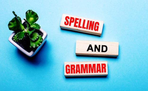 Spelling and grammar é escrito em blocos de madeira em uma mesa azul clara perto de uma flor em um vaso