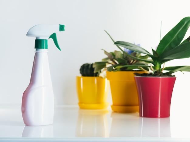 Spray de água com plantas em casa em cima da mesa