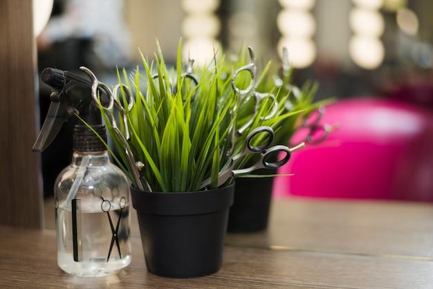 Spray de salão de cabeleireiro com planta