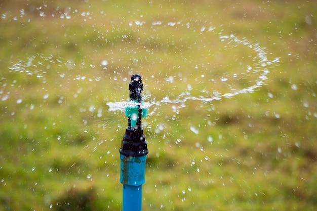 Springer de água no jardim