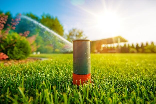 Sprinkler de gramado em ação