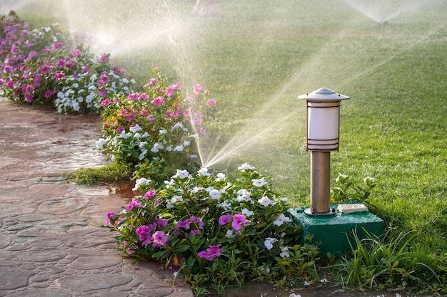 Sprinkler de plástico irrigando canteiro de flores na grama com água no jardim de verão. regar a vegetação verde cavando a estação seca para mantê-la fresca.