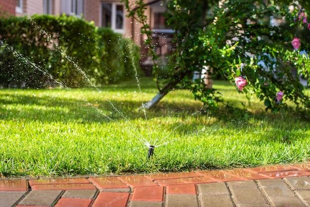 Sprinklers automáticos para regar a grama