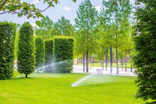 Sprinklers automáticos para regar a relva. o gramado é regado no verão. conveniente para casa. verduras frescas