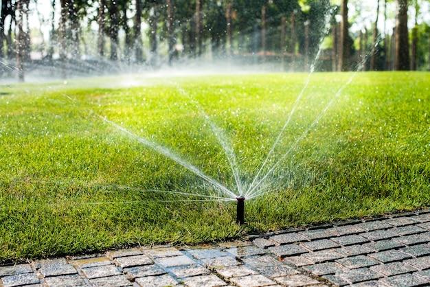 Sprinklers automáticos para regar a relva. o gramado é regado no verão. conveniente para casa