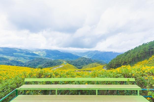 Stan da flor e da montanha amarelas do ponto de vista.