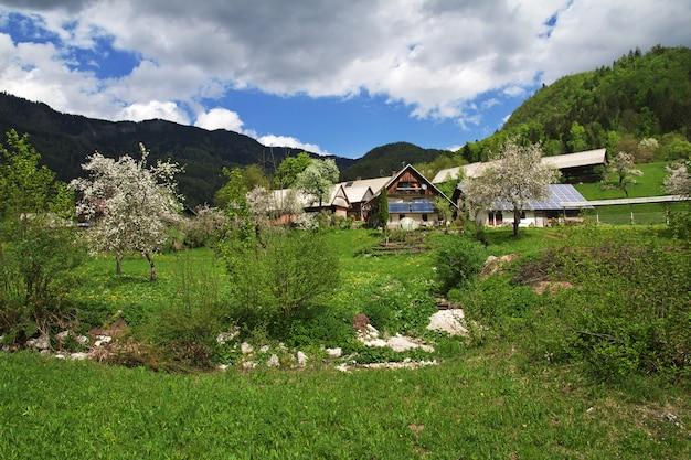 Stara fuzina nos alpes da eslovênia
