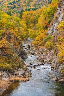 Strean e água naturais caem no japão durante a mudança de estação de cores.