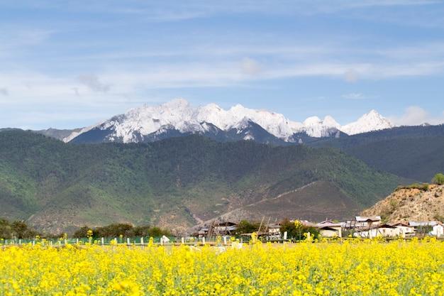 Subúrbio de shangri la, yunnan, china.