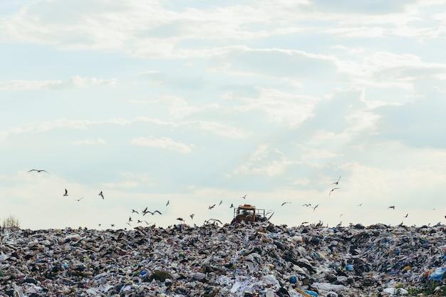 Sucata de lixo doméstico em aterro sanitário