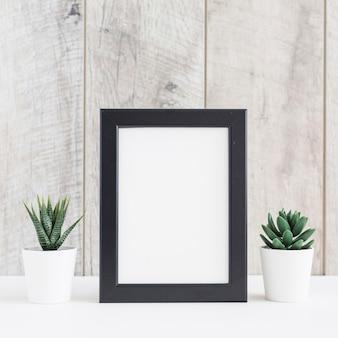 Suculenta planta em dois pote branco com a moldura em branco contra a parede de madeira