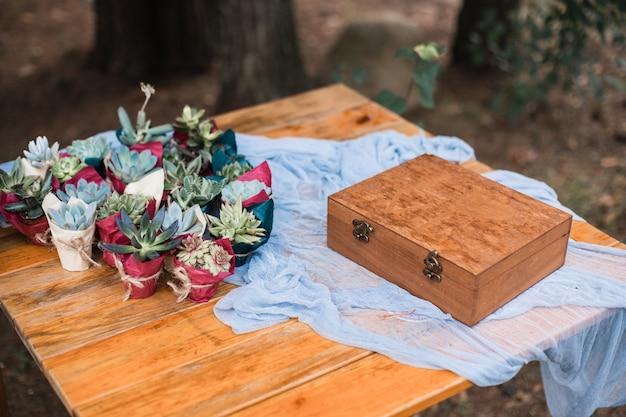 Suculentas diferentes e cactos em vasos na mesa de madeira escura com pano azul. vista superior, plano de fundo