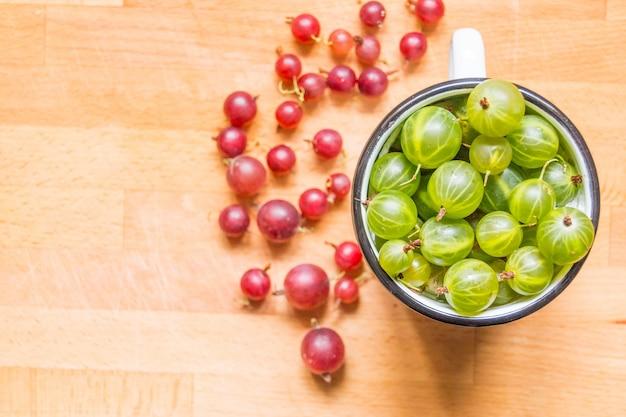 Suculentas frescas maduras groselhas verdes e vermelhas
