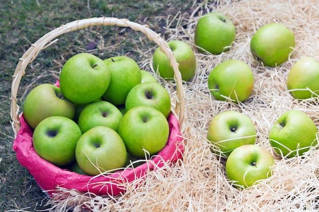 Suculentas maçãs verdes na cesta