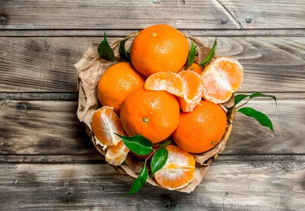 Suculentas mandarinas com folhas em basret.