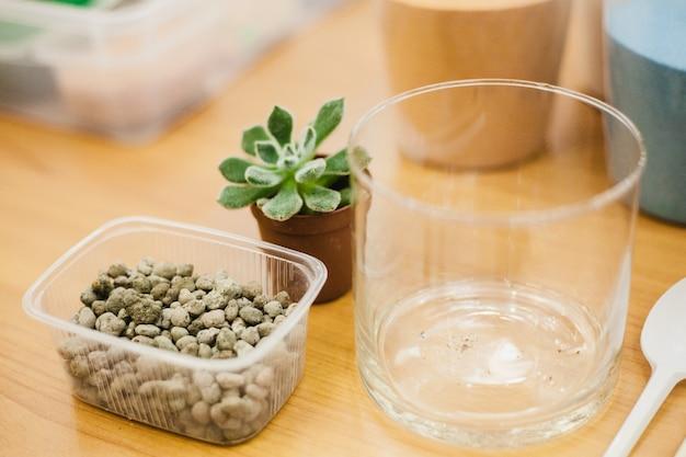 Suculentas, plantas e ferramentas de plantio de plantas