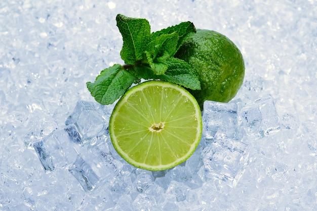 Suculento limão fresco e hortelã em cubos de gelo