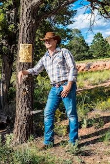 Sudoeste - o cowboy leva um tempo para descansar e refletir.