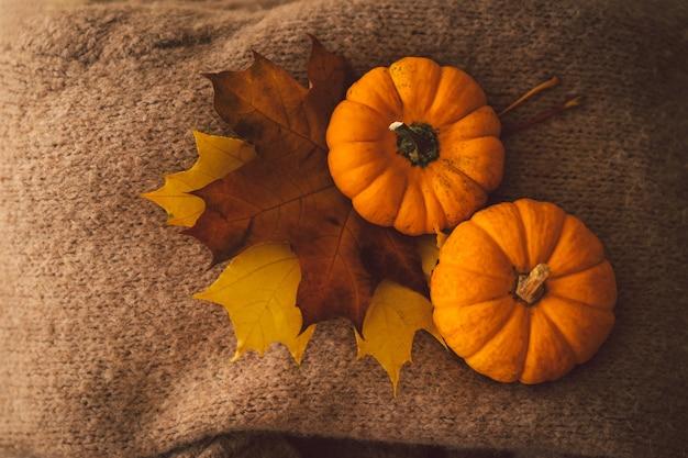 Suéteres e duas abóboras com folhas de outono detalhes de natureza morta no interior de casa aconchegante outono
