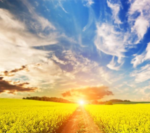 Sujeira maneira ao pôr do sol