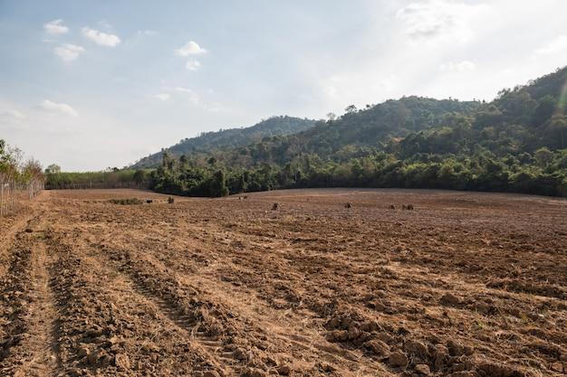 Sulque o teste padrão da fileira no campo preparado para plantar colheitas.