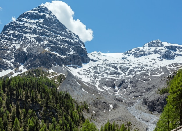 Summer stelvio pass com floresta de abetos e neve no topo da montanha (itália)