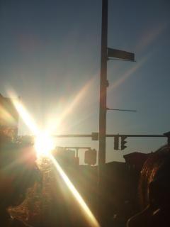 Sunflair