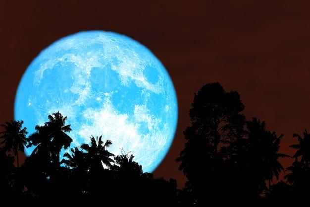 Super colheita de árvores com silhueta de lua azul no céu vermelho noturno