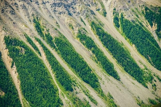 Superfície bonita grande da montanha da natureza com close-up verde da área da floresta. cenário natural da encosta da montanha gigante com floresta de coníferas e riacho de pedregulho. plano de textura de pedras.