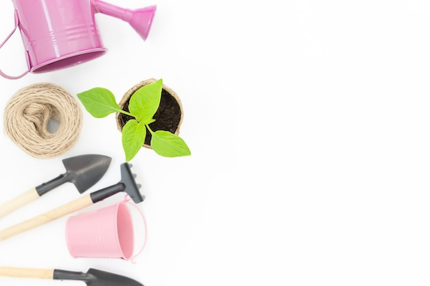 Superfície com mudas no vaso e equipamentos para jardinagem