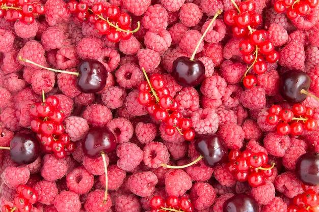 Superfície da fruta. framboesas, cerejas e groselhas. fechar-se. vista do topo.