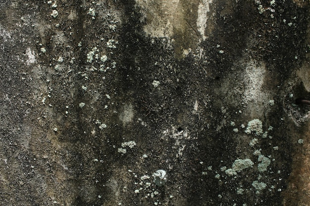 Superfície da parede com gesso de cimento velho