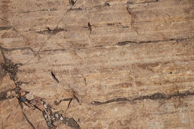 Superfície da pedra da rocha
