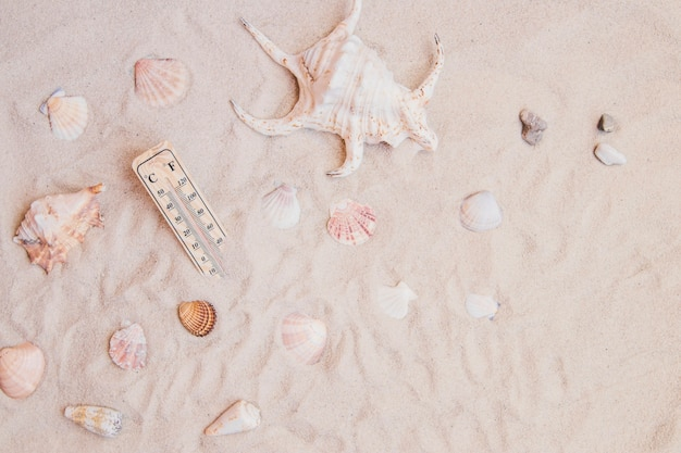 Superfície de areia com conchas e termômetro